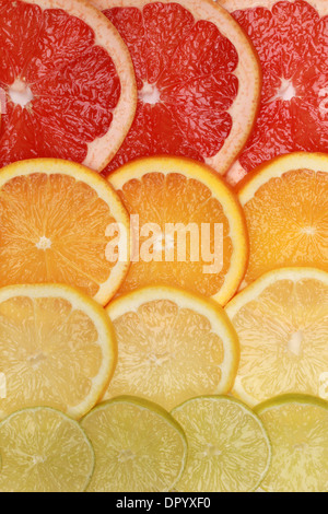 Background from sliced lemons, oranges, grapefruits and limes - Stock Photo