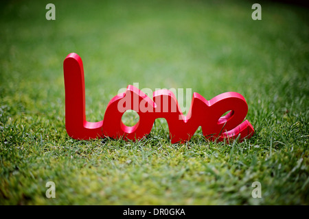 Love sign pictured on grass - Stock Photo