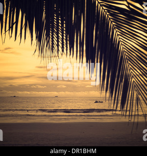 Detail of palm leaf and lovely beach during evening summer day. Langkawi, Malaysia. - Stock Photo