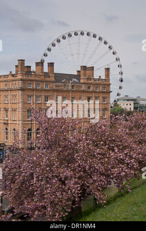 Towering York Wheel tourist attraction, in grounds of impressive historic hotel, the Royal York (now The Principal) - Stock Photo