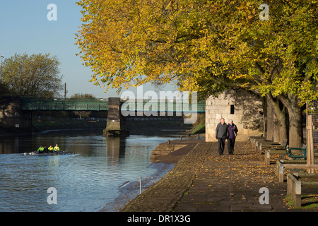 Rowers in boat & couple walking - quiet, scenic, sunlit, tree-lined riverside footpath in autumn - River Ouse, Dame - Stock Photo