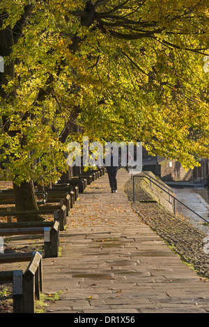 Man walking alone, along a quiet, scenic, sunlit, tree-lined riverside footpath on sunny day in early autumn - Dame - Stock Photo