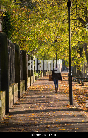 1 young woman walking alone, along a quiet, scenic, tree-lined footpath on a sunny day in early autumn - Dame Judi - Stock Photo