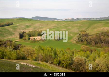 landscape, crete senesi, siena, tuscany, italy, europe - Stock Photo