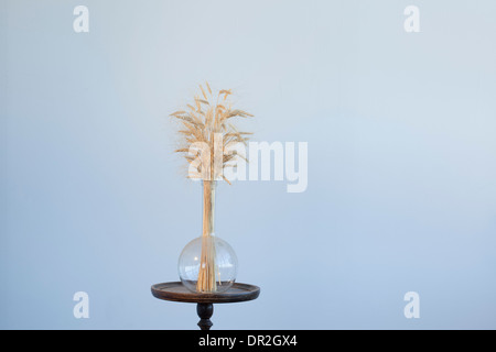 dry wheat in a glass flask on a wooden stand - Stock Photo