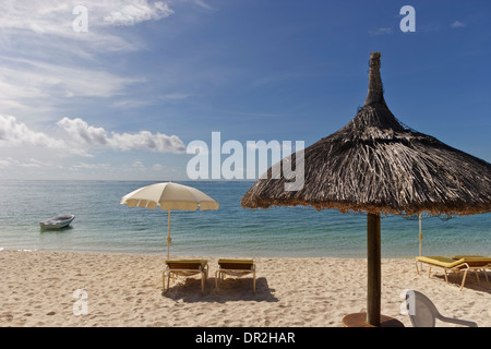 Sun recliners with umbrellas on sandy beach Mauritius. - Stock Photo & Beach recliners on the beach Mauritius Stock Photo Royalty Free ... islam-shia.org