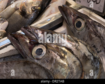 A scabbard fish for sale at a fish market stock photo for Doctor fish for sale
