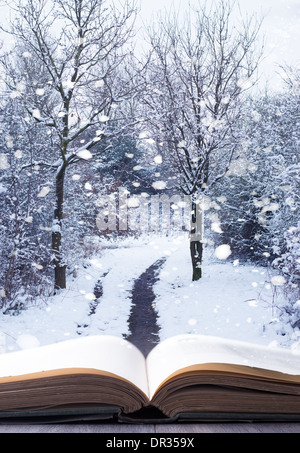Open book with winter woodland background and falling snow - Stock Photo