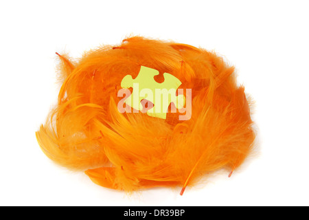 puzzle piece in orange feathers nest - Stock Photo