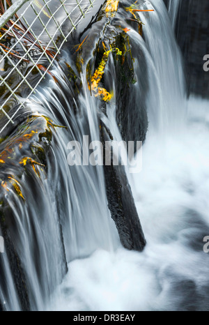 Close up of cascading at Burton Mill Pond - Stock Photo