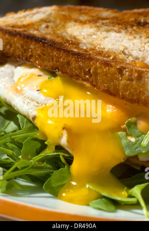 Runny egg breakfast sandwich - Stock Photo