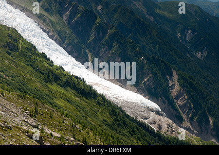 End of the Bossons glacier between Mont Blanc and Aiguille du Midi in the Chamonix valley in the French Alps - Stock Photo