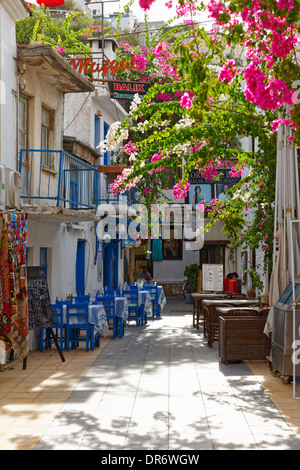 Turkey, Mugla Province, Marmaris, Alley in the old town with Bougainvillea - Stock Photo