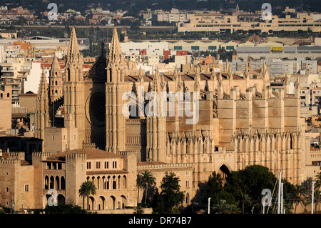 Images of the Palma de Mallorca port and its Cathedral in background. - Stock Photo