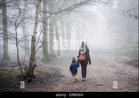 Brentwood, Essex, UK. January 21st 2014  A mother and her child brave the thick fog and freezing conditions as they - Stock Photo