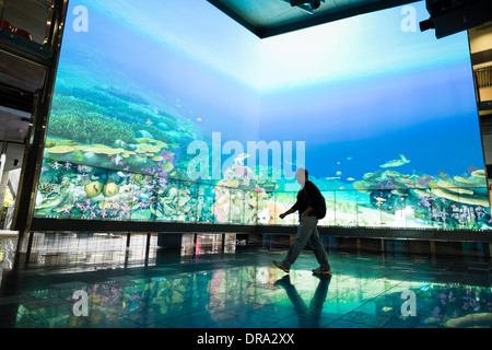 Large multimedia screen showing virtual reef at The Cube centre at Queensland University of Technology QUT in Brisbane - Stock Photo