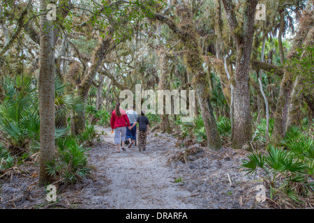 People walking on William S Boylston nature trail leading to Canopy walk in Myakka River State Park Sarasota Florida - Stock Photo