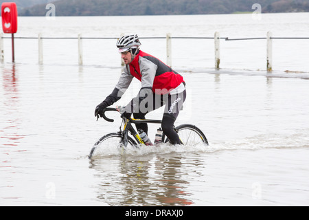 A cyclist travels through flood waters on the road at Storth on the Kent Estuary in Cumbria, UK, during the January - Stock Photo