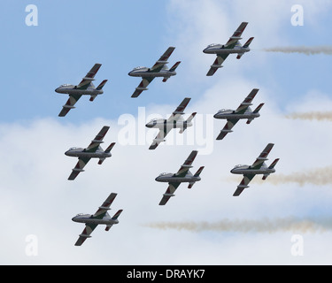 Frecce Tricolori  Italian airforce aerobatic display team at RIAT 2011 - Stock Photo