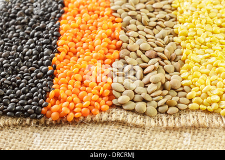 Varied types of Lentils - Stock Photo