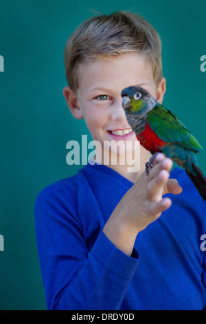 Young boy with pet parrot - Stock Photo