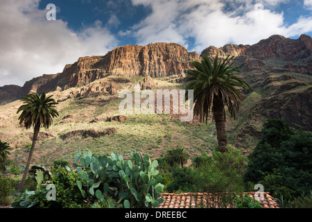 The village of Arteara in the steep-sided Barranco de Fataga, walled by a thick sequence of trachyte and phonolite - Stock Photo