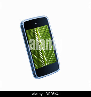 phone with green palm leaf image on the screen - Stock Photo