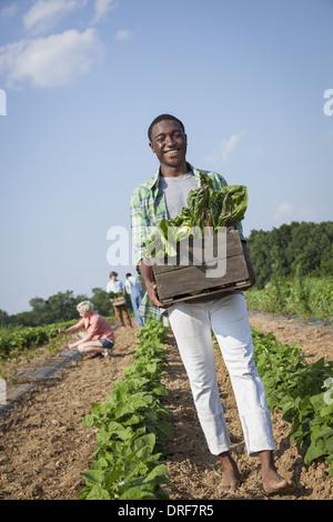 Maryland USA boy holding large wooden box of fresh vegetables - Stock Photo