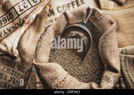 New York state USA Hessian sacks beans coffee bean processing shed - Stock Photo