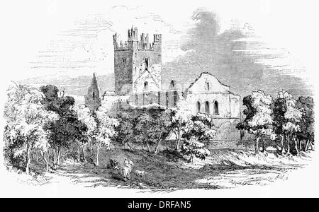 Dunbrody Abbey near Waterford County Wexford Ireland circa 1854 - Stock Photo