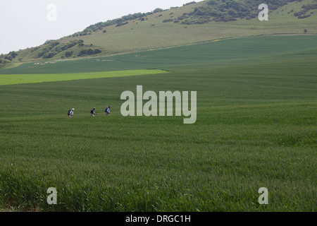Sussex Downs. Wilmington. Windover Hill. Sussex Downs Area Outstanding Natural Beauty. Southern England. - Stock Photo