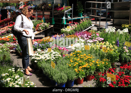 Market at Isestrasse, Hamburg, Germany, Europe - Stock Photo
