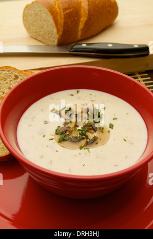 cream of Mushroom soup in a red bowl on a red plate garnished with sliced mushrooms - Stock Photo