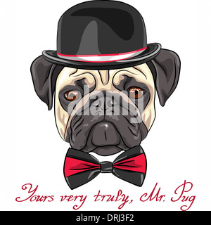 color sketch hipster serious dog fawn pug breed in a hat and bow tie - Stock Photo