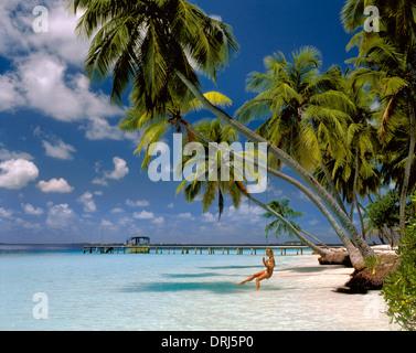 Girl on Swing Under Palm Trees, Kuda Bandos Island, North Male Atoll, Maldives, Maldive Republic, Indian Ocean Atoll. - Stock Photo