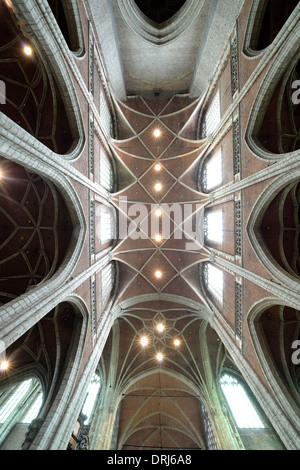 Indoor photograph cover net vault in the main ship, Roman-Catholic St. Bavo cathedral (in Dutch Sint-Baafskathedraal) - Stock Photo