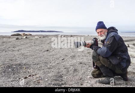 Fotograf und Walrosse, odobenus rosmarus / photographer and walruses, odobenus rosmarus