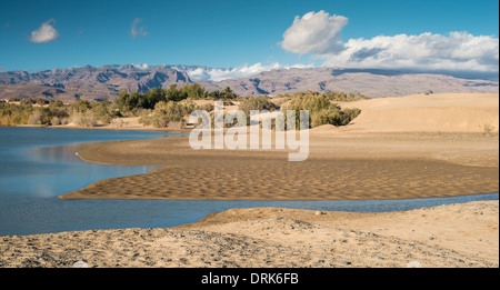 La Charca de Maspalomas, a wetland nature reserve at the western end of the Maspalomas dunes, Gran Canaria, Canary - Stock Photo
