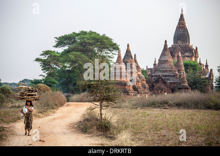 Woman carrying firewood and a Buddhist Temple complex in Bagan, Myanmar - Stock Photo
