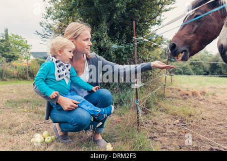 Mother and son feeding a horse with apples - Stock Photo