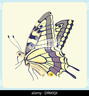 Eastern Tiger Swallowtail butterfly - Stock Photo