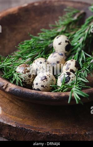 Fresh quail egg in bowl - Stock Photo