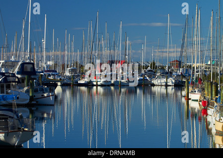 Boats at Nelson Marina, Nelson, South Island, New Zealand - Stock Photo