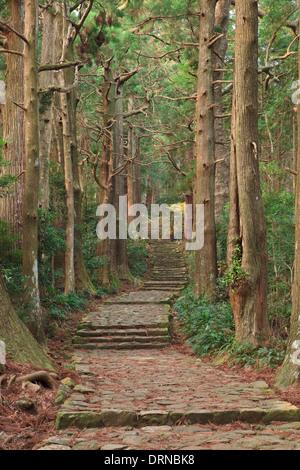 Daimon slopes on the Kumano Kodo