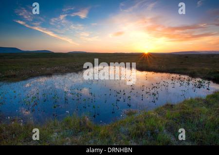 Bog pool sunset beneath the Nephin Beg Mountains, Ballycroy National Park, County Mayo, Ireland.