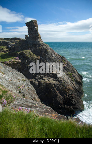 The Black Castle near Wicklow Town, County Wicklow, Ireland. - Stock Photo