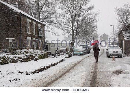 Holwick, Middleton-in-Teesdale, Co Durham, UK. 31st Jan, 2014. A snowstorm hits UpperTeeasdale in the North Pennine - Stock Photo
