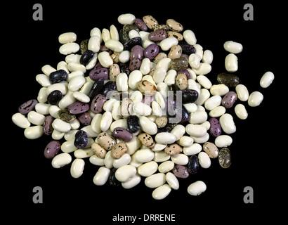 Pinto beans - Stock Photo