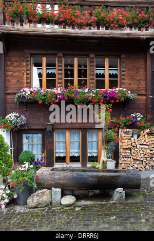 Water fountain trough and Swiss timber house in 18th Century Brunngasse at Brienz in Bernese Oberland, Switzerland - Stock Photo