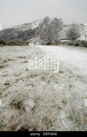 Frozen Grass caused by freezing rain on the beacon, Malvern Hills, Worcestershire at dusk. - Stock Photo